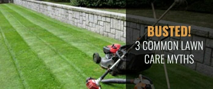 3 Common Lawn Care Myths – Busted!