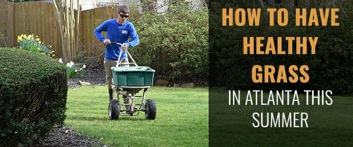 How To Keep Your Grass Healthy In The Atlanta Summer