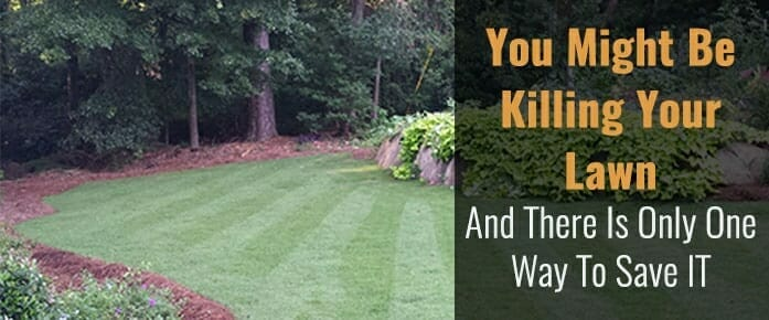 You Might Be Killing Your Lawn And There's Only One Way To Save It!