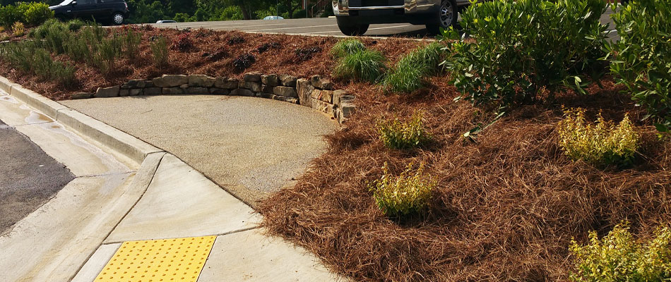 Pine straw landscape bed installed in Roswell, GA.